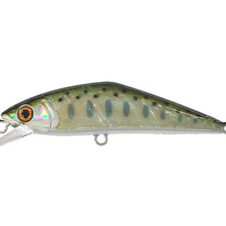 SMITH D Contact Abalone 63